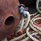 Rusty Buoys by Jane Jenkins