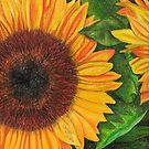 Sunflower Sketch by Chris Neal