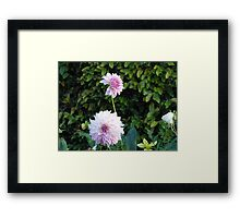 Flower iphone case Framed Print