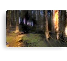 Forest Roots Canvas Print
