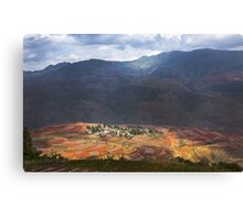 the red soil Canvas Print
