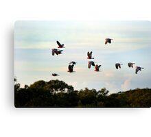 Urunga on the Mid North Coast NSW Canvas Print