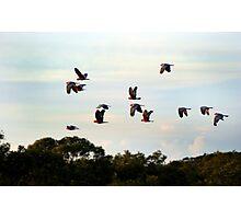 Urunga on the Mid North Coast NSW Photographic Print