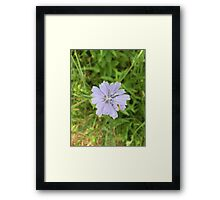 Single Lavendar Flower and a Bee Framed Print
