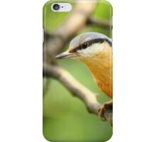The Hatcher of Nuts iPhone Case/Skin