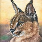 Caracal Sunset by Nicole Zeug