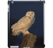 Memorable morning iPad Case/Skin