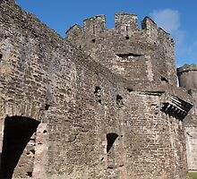 Conwy Castle (8) by kalaryder