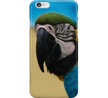 Blue-and-Gold Macaw Parrot iPhone Case/Skin