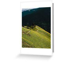 Wildflower Trail Greeting Card