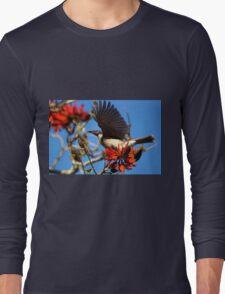 Noisy Friabird, Urunga NSW Long Sleeve T-Shirt