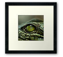 Eye of the Crocodile [Print & iPad Case] Framed Print