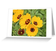 Yellow And Maroon Centers Greeting Card
