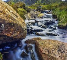 Mountain Top Stream by Ian Mitchell