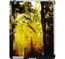 Morning under trees iPad Case/Skin