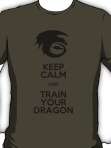 Keep calm and train your dragon T-Shirt