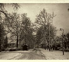 It Snowed that Day by Elaine Teague