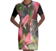Through the Roses Graphic T-Shirt Dress