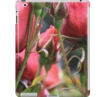 Through the Roses iPad Case/Skin