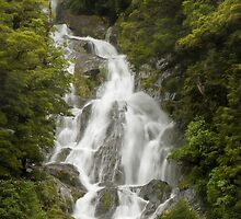 Fantail Falls by Vickie Burt