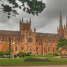 St Mary's Cathedral by Michael Matthews