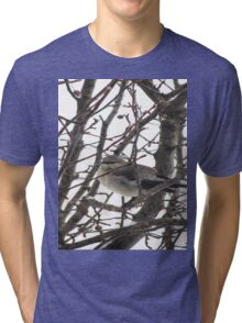 Bird in the Snow Tri-blend T-Shirt