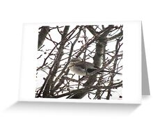 Bird in the Snow Greeting Card