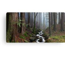 Misty Forest Stream Metal Print