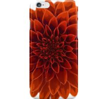 Beautiful Dahlia flower design iPhone Case/Skin