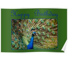 Happy Birthday Peacock Poster