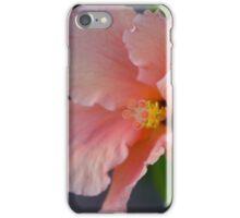 Peach Explosion iPhone Case/Skin