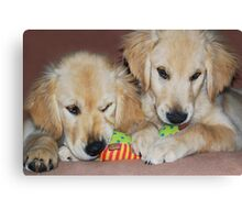 """""""Sibling Rivalry"""" Canvas Print"""
