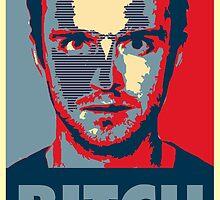 Jesse Pinkman Obey by Golzer