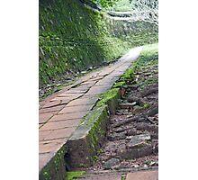 Monastery Walk Photographic Print