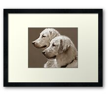 Goldies ~ After The Swim Framed Print
