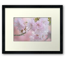 """""""In The Pink"""" Framed Print"""