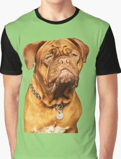 Hootch - Bordeaux Mastiff Dog Graphic T-Shirt