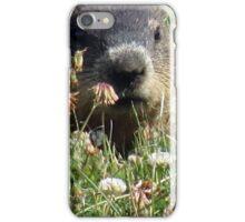 Groundhog, Montreal iPhone Case/Skin