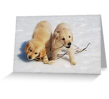 Puppies in Winter Greeting Card