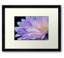 Sunshine Within Framed Print