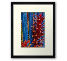 In De-Fence Framed Print