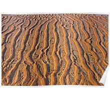 mud flat patterns  Poster