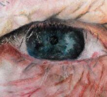 Grandfather's Eye Sticker