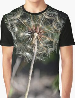Dandelion it up Graphic T-Shirt