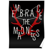Embrace the madness Poster