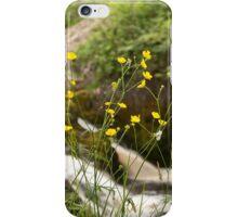 Beezley Through the Buttercups iPhone Case/Skin