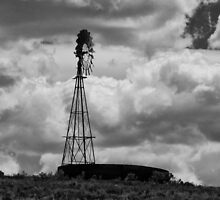 Water Tank And Windmill  by Gary Benson