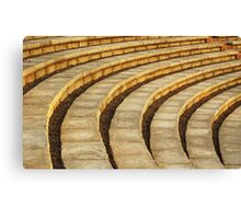 'Talons' (amphitheater abstract) Canvas Print