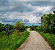 Country Road by Laurie Minor