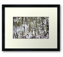 """""""Rebirth of a Forest"""" Abstract On Bark Framed Print"""